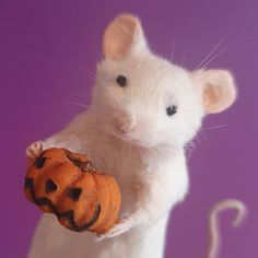 Taxidermy mouse with pumpkin Taxidermy, Halloween Pumpkins, Trending Outfits, Unique Jewelry, Handmade Gifts, Vintage, Etsy, Kid Craft Gifts, Halloween Gourds