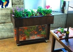 This hydroponic garden fits in the kitchen and uses a re-purposed fish tank. :-)