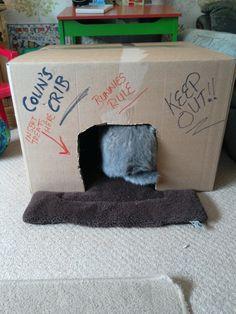 Colin loves his cardboard crib