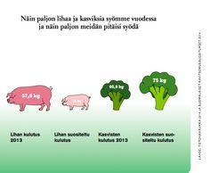 Miksi valtio tyrkyttää lihaa?
