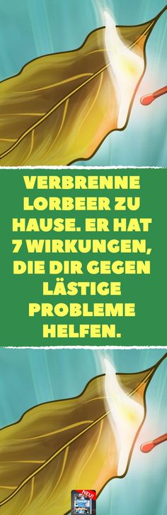 Verbrenne Lorbeer zu hause. Er hat 7 Wirkungen, die dir gegen lästige Probleme helfen.7 x Lorbeer für die Gesundheit. #lorbeer #gesundheit #blasenentzündung #atemwege #befreien #diabetes