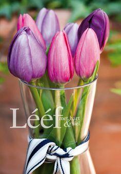 Photographer - Candice Askham All Flowers, Fresh Flowers, Beautiful Flowers, Different Kinds Of Flowers, Bouquet Wrap, Flower Boxes, Planting Flowers, Flower Arrangements, Bloom