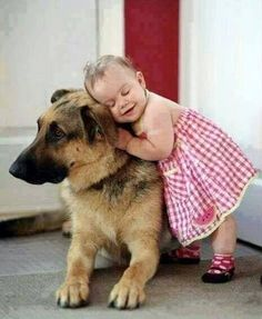 Adorable little girl hugging her German Shepard friend.