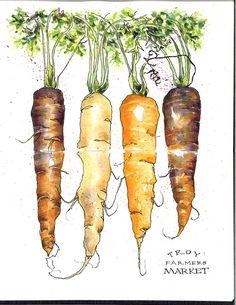 carrots_farmers-market