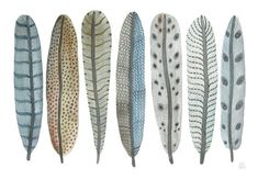 great watercolor whimsical feathers by GollyBard on etsy