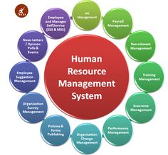 Why do you like human resource management. Human resource management classes near me. Human resource management in public service. Where can human resource management work. Organization And Management, Hr Management, Change Management, Talent Management, Business Management, Project Management, Office Organization, Human Resources Career, Human Resource Management System