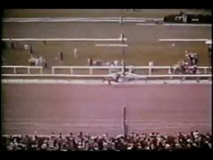 The greatest racehorse that ever lived...Secretariat at the Belmont Stakes