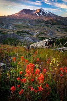 ✮ Mount St. Helens National Volcanic Monument - Washington