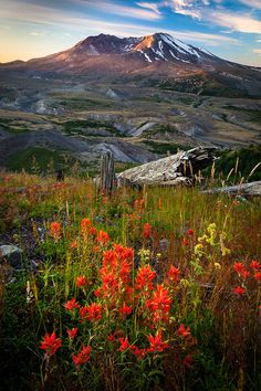 ✮ Mount St. Helens National Volcanic Monument - Washington #mtsthelens