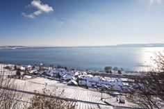 www.biel-seeland.ch #Bielersee #winter #twann Switzerland, Winter, World, Travel, Photos, Recovery, Old Town, Tourism, The World