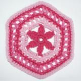 Crochet a Granny-Style Hexagon Motif with a Flower: A Crocheted Granny Hexagon With A Flower in the Center