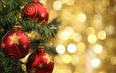 images of beautiful christmas food. - Bing Christmas Books, Christmas Themes, Christmas Tree Decorations, Christmas Ornaments, Holiday Decor, Black Leather Dining Chairs, Black Leather Sofas, Xmas Baubles, Cool House Designs