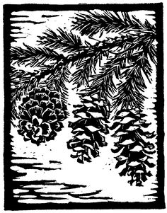 "Trees of Yosemite (1932, 1948), ""Mountain Hemlock,"" by Mary Curry Tresidder"