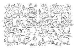 Ela Jarzabek - hedgehogs .jpg