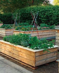 Raised-bed design: If you want more than the standard box, here's how to kick your gardening up a notch
