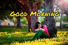 Good Morning Flowers Images 2020 - Best New Collection Lovely Good Morning Images, Latest Good Morning, Good Morning Images Download, Good Morning Flowers, Good Night Image, Good Morning Wishes, Cute Rose, Most Beautiful Flowers, Flower Images