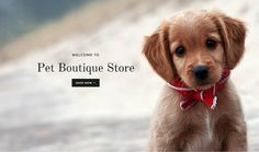 www.petboutiquestore.com  Pet Boutique is the #1 Online Pet store where all Dog & Cat owners shop for all their Boutique Pet Supplies Pet Designer Clothes and Pet Accessories.  #dog #petstagram #pets #animal #cute #cat #dogsofinstagram #puppy #instagood #instadog #petsagram #dogstagram #photooftheday #adorable #love #nature #cats #catsofinstagram #catstagram #dogoftheday #ilovemydog #dogs #kitty #kitten #instacat #doglover #instapet #catlover #petsofinstagram GetHashtags.com