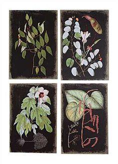 Canvas wall prints.