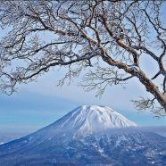 A JAPANESE LOVE AFFAIR - http://globaldetour.co/2014/03/31/a-japanese-love-affair/