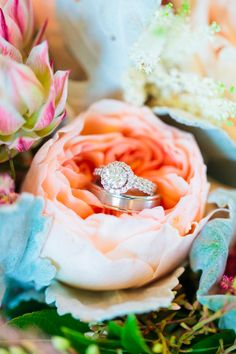 Gorgeous bling #ring | See more on SMP:  http://www.StyleMePretty.com/little-black-book-blog/2014/01/22/8-tips-to-beautiful-wedding-flowers-on-a-small-budget/