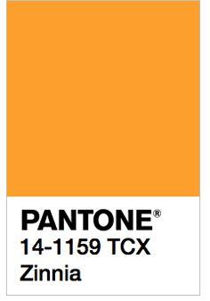 Pantone Tcx, Pantone Swatches, Color Swatches, Pantone Color, Pantone Paint, Color Box, Colour Board, Best Color Schemes, Solid Color Backgrounds