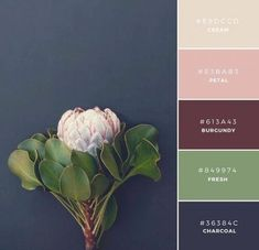 """Build Your Brand: 20 Unique and Memorable Color Palettes to Inspire You – """"Fall Collection"""" This palette has a traditional or antique tone to it. This is a great combination to represent a product that is a little more refined or mature. Color Schemes Colour Palettes, Kitchen Colour Schemes, Green Colour Palette, Bedroom Color Schemes, Kitchen Colors, Color Combinations, Green Colors, Kitchen Decor, Warm Kitchen"""