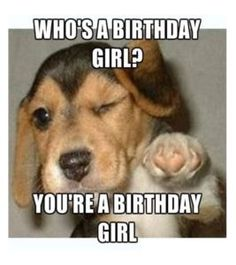 50 Happy Birthday Dog Memes Funny Memes - Happy Birthday Funny - Funny Birthday meme - - 50 Happy Birthday Dog Memes Funny Memes The post 50 Happy Birthday Dog Memes Funny Memes appeared first on Gag Dad. Birthday Meme Dog, Birthday Quotes Funny For Her, Happy Birthday For Her, Funny Happy Birthday Wishes, Happy Birthday Parties, Happy Birthday Images, Girl Birthday, Birthday Ideas, Birthday Pictures