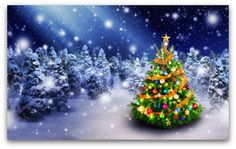 Magnificent colorful Christmas tree outdoor in a snowy night with a shooting star in the sky, for the perfect Christmas mood , Christmas Tree Baubles, Colorful Christmas Tree, Christmas Mood, Christmas Images, Christmas Snowman, Christmas Themes, Holiday Decor, Merry Christmas, Green Christmas
