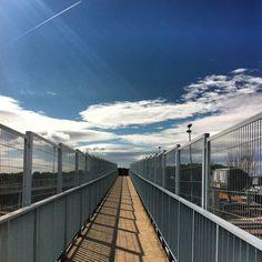 Bridges 2  ©Lourdes Pozo