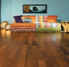 Colorful modern home decor - click for tips and inspirations.