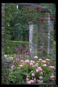 visby-botaniska-tradgarden-69