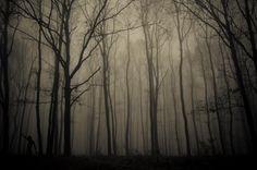Photo Autumn horror by Alex Mazilu on 500px