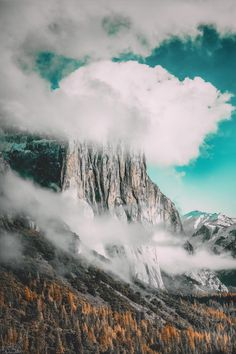 Yosemite National Park Source:instagram.com