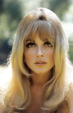 It's The Pictures That Got Small ... Sharon Tate, Vintage Makeup, Vintage Beauty, Vintage Hairstyles, Hairstyles With Bangs, 1970s Hairstyles, Updo Hairstyle, Prom Hairstyles, Hair Inspo
