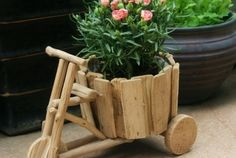 conseils jardinage roses idee