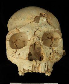 YA TENÉIS DISPONIBLES LOS NUEVOS CONTENIDOS DE LA REVISTA DE CASTILLA Y LEÓN JUNTO AL TEMA DESTACADO DE LA SEMANA:  El extraño suceso del cráneo 17 de Atapuerca, el primer caso documentado de asesinato conocido en la humanidad http://revcyl.com/www/index.php/ciencia-y-tecnologia/item/5962-el-extra%C3%B1o-suceso-del-cr%C3%A1neo-17-de-atapuerca-el-primer-caso-documentado-de-asesinato-conocido-en-la-humanidad