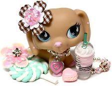 Littlest Pet Shop 909 Dachshund Polka Dot Pink Brown Tan w/ Green Eyes Blemished Lps Dachshund, Brown Dachshund, Pink Eyes, Green Eyes, Lps Diy Accessories, Lps Pets, Little Pet Shop Toys, Pink Brown, Fun Ideas