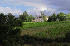 Le domaine est niché en haut d'un coteau entre Champ-sur-Layon et Valanjou