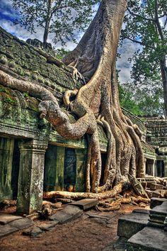 Angkor Wat è un tempio di Angkor, Cambogia,