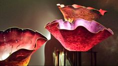 Seattle -- Chihuly flowers in bloom