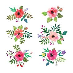 Vector flowers set. Floral collection with watercolor leaves and flowers. - ilustración de arte vectorial
