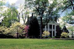 Hazelpath Mansion - Hendersonville, TN  You're really taking me home Jo Elizabeth!!  Thanks, Maggie