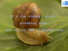 It's the steady, quiet, plodding ones who win in the lifelong race. -Robert W. Service