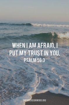 When I am afraid, I put my trust in you. - Psalm 56:3 #psalms #trust #christian #faith #christianencouragement #scripture #believe