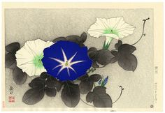 Japanese woodblock print: morning glories