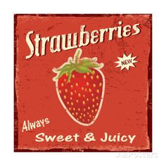 Find Strawberry Vintage Grunge Poster Vector Illustration stock images in HD and millions of other royalty-free stock photos, illustrations and vectors in the Shutterstock collection. Strawberry Quotes, Strawberry Art, Strawberry Fields, Strawberry Patch, Strawberry Shortcake, Poster Art, Retro Poster, Vintage Posters, Vintage Grunge