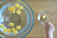 Five Minute Montessori - Sponge and Tong Activity