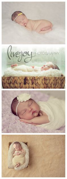 Newborn photography Salem Oregon #Newborn #LiveJoyPhotography