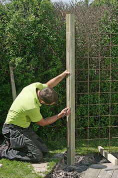 Vindskydd terrass Diy Fence, Backyard Fences, Garden Fencing, Metal Garden Gates, Flower Fence, Grape Trellis, Garden Screening, Porch Garden, Garden Structures