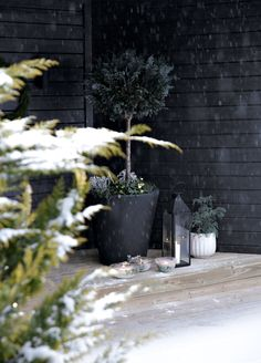 An easy and affordable way to decorate your doorstep in the wintertime or for Christmas, is to make ice lanterns. Scandi Christmas, White Christmas, Interior Architecture, Interior Design, Design Blogs, Black House, White Decor, Winter Time, Blackberry